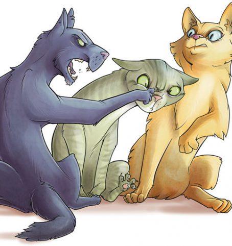 Download Beispielmiezen für: Die geheime Welt der Katzen